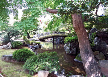 A Tale of Two Cities: Nagoya and Kyoto