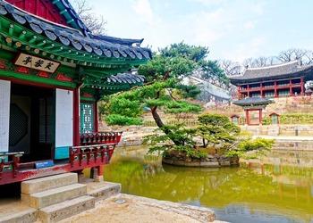 A Look at Korea's Enchanting ChangdeokgungPalace